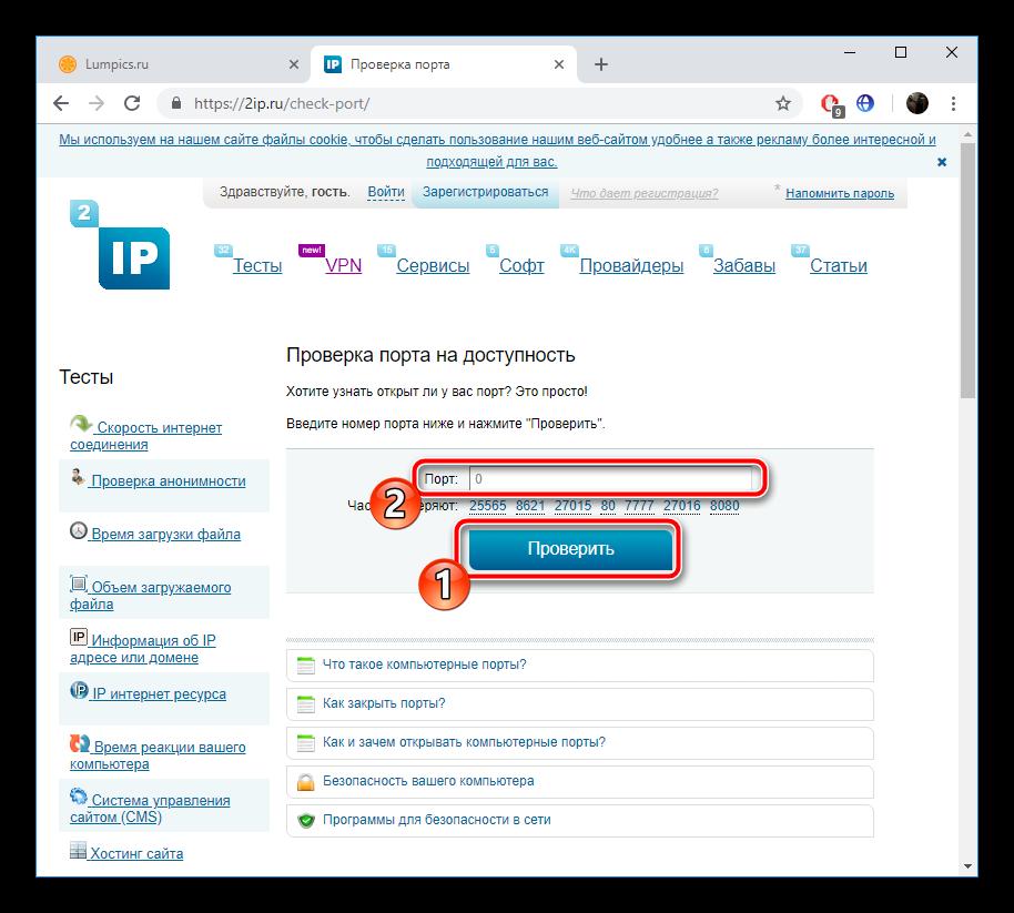 Proverit-port-na-sayte-2IP.ru_.png
